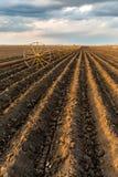 与灌溉系统的土豆领域,在播种之后 库存图片