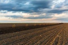与灌溉系统的土豆领域,在播种之后 免版税库存图片