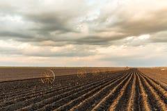 与灌溉系统的Potatu领域,在播种之后 免版税库存照片