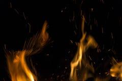 与火热的橙色火焰、火花和炭烬explodi的灼烧的火 库存图片