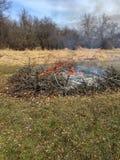 与火焰和烟的燃烧的刷子 免版税图库摄影