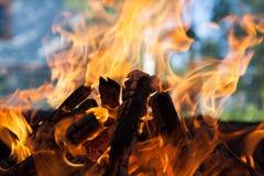 与火焰被烧焦的木头的美好的火 免版税图库摄影
