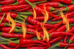 与火焰破裂的辣热的红色泰国胡椒 免版税图库摄影