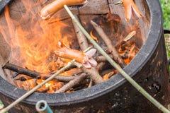 与火罐和有些香肠的烤肉在棍子 图库摄影