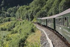与火车的风景 免版税库存照片