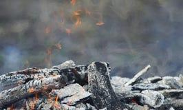 与火闷燃的被烧焦的木和红色火焰的背景  图库摄影
