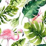 与火鸟的热带被隔绝的无缝的样式 水彩热带图画、玫瑰色鸟和绿叶棕榈树,回归线 免版税库存照片