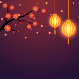 与灯笼和花卉分支的中国背景 库存图片