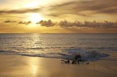 与灰云彩,安提瓜岛的金黄日落 免版税库存图片