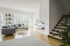 与灰色壁角长沙发的白色客厅内部,新绿色p 免版税库存照片
