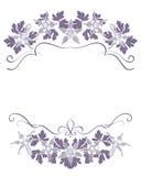 与灰色紫罗兰色花卉框架的白色背景与aquilegia 库存图片