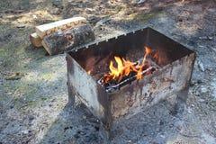 与灼烧的木柴的烤肉 免版税库存图片