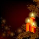 与灼烧的蜡烛和圣诞树的背景 免版税图库摄影