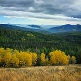 与烟的秋天颜色 免版税图库摄影