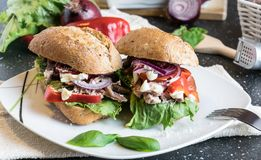 与烤猪肉、菜和蛋黄酱片断的自创三明治  库存图片