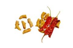 与热和辣干燥冷颤的自然姜黄 免版税库存照片