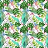 与热带兰花flowe的水彩无缝的花卉背景 图库摄影