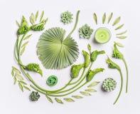 与热带叶子、多汁植物、绿色花和蜡烛的植物的平的位置在白色背景,顶视图 免版税图库摄影