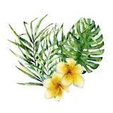 与热带叶子和花的水彩花卉心脏 与monstera、棕榈分支和叶子的手画花束 库存照片