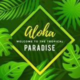 与热带叶子的热带天堂夏天海报 免版税图库摄影