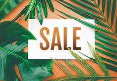 与热带叶子的销售文本在淡色背景中 对PR 库存照片