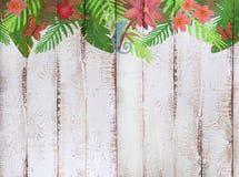 与热带密林样式的边界在白色木背景 库存图片