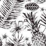 与热带棕榈叶、花和菠萝的无缝的样式 皇族释放例证