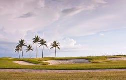 与热带棕榈树的高尔夫球场日落 免版税图库摄影
