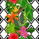 与热带植物、叶子和花的无缝的样式 背景被做,不用截去的面具 易使用为 免版税图库摄影