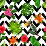 与热带植物、叶子和花的无缝的样式 背景被做,不用截去的面具 易使用为 库存图片