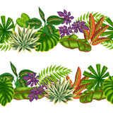 与热带植物和叶子的无缝的边界 背景被做,不用截去的面具 易使用为背景 免版税库存照片