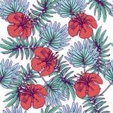 与热带植物和木槿的夏天五颜六色的夏威夷无缝的样式开花 库存图片