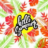 与热带植物和木槿的夏天五颜六色的夏威夷样式开花 库存图片