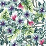 与热带植物的一个无缝的五颜六色的样式 库存例证