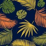 与热带植物的无缝的异乎寻常的样式 传染媒介手凹道背景 免版税库存图片