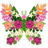 与热带花和叶子的异乎寻常的蝴蝶 免版税库存图片