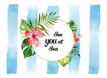 与热带花和叶子的水彩卡片在镶边的后面 库存照片