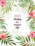 与热带花和叶子的水彩背景 库存图片