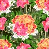 与热带花植物布置的无缝的纹理花束,与美好的黄色和桃红色百合德国锥脚形酒杯,棕榈, philode 免版税库存照片