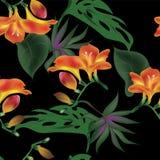 与热带花的无缝的传染媒介样式 库存图片