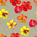与热带花的无缝的样式 古老背景黑暗的纸水彩黄色 向量例证