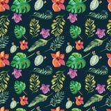 与热带花的无缝的花卉样式,水彩 向量例证
