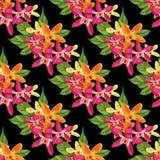 与热带花的无缝的花卉样式 皇族释放例证
