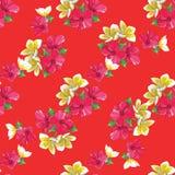 与热带花的无缝的花卉样式 库存例证
