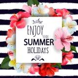 与热带花的暑假背景 向量 免版税图库摄影