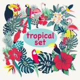 与热带鸟、棕榈叶和花的背景 图库摄影
