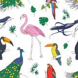 与热带鸟和异乎寻常的叶子的美好的色的无缝的样式手拉在白色背景 五颜六色的向量 免版税库存图片