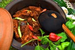 与热的热的Kochchi的斯里兰卡的鸡咖喱! 免版税库存照片