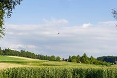 与热空气气球的风景场面 库存图片
