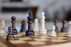 与焦点的棋盘比赛在模糊的背景的黑白女王/王后片断 免版税图库摄影